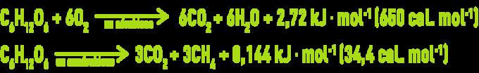 Formule : culture aérobies, cultures anaérobies - évolution du glucose