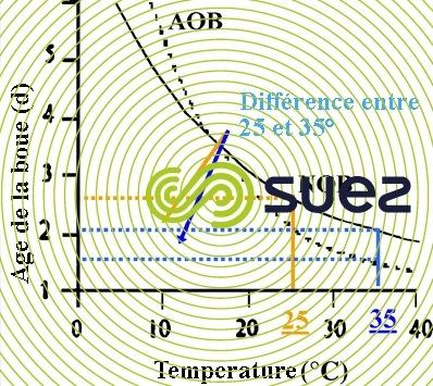 Influence température croissance AOB - NOB