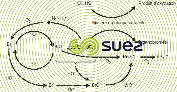 réactions ions bromures ozonation eaux naturelles