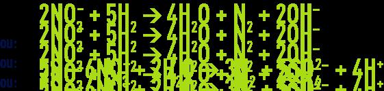 Formule : Les procédés biologiques de dénitrification - bactéries autotrophes